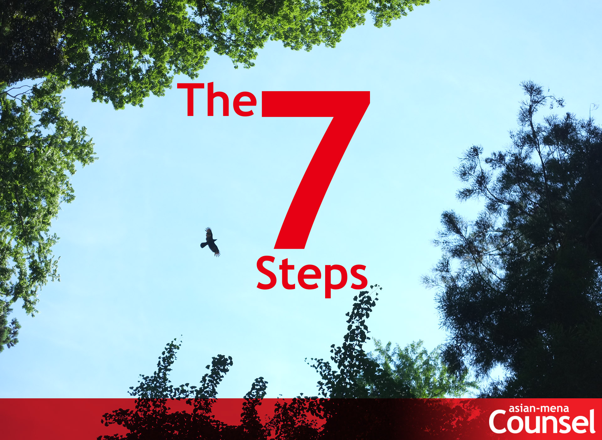 7 Step